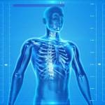 Munkahelyi megkeserítőnk: a gerincfájdalom