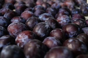 Őszi gyümölcsök jótékony hatásai - szilva